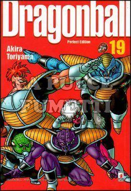 DRAGON BALL PERFECT EDITION #    19