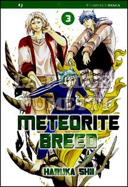 METEORITE BREED #     3